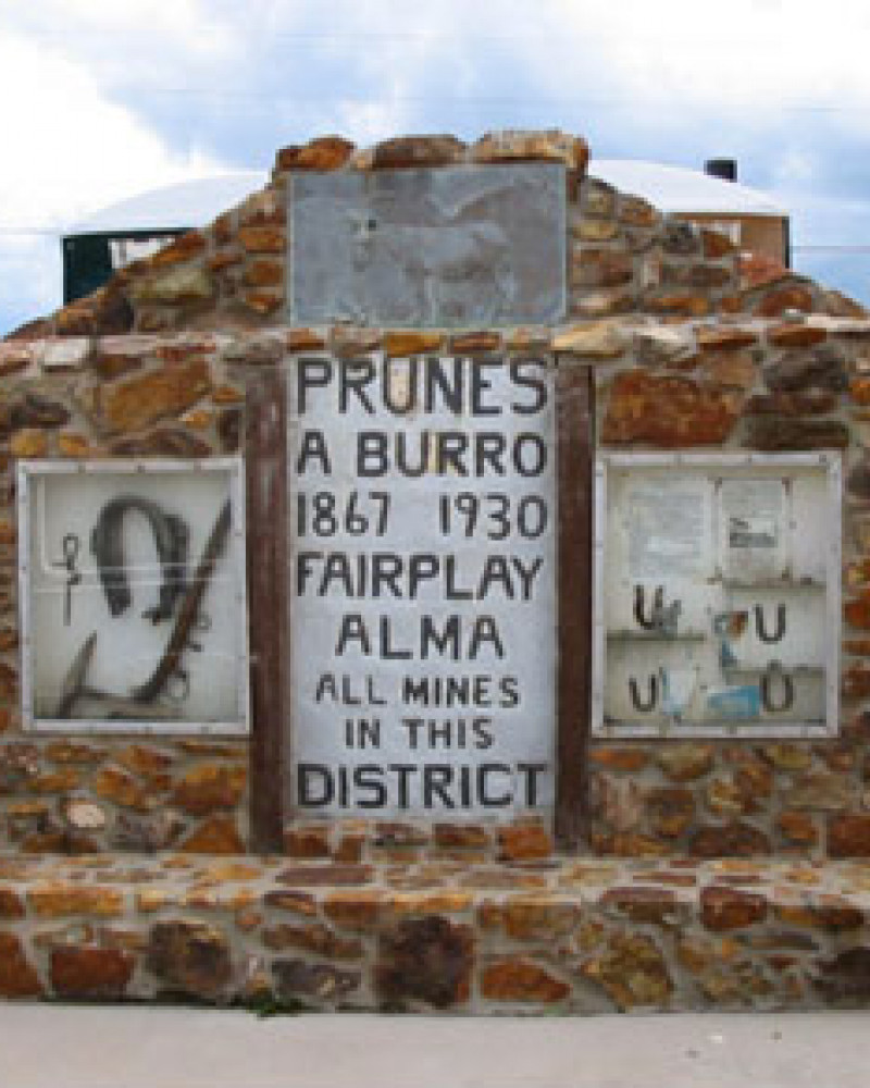 The tribute to a legendary burro, Prunes